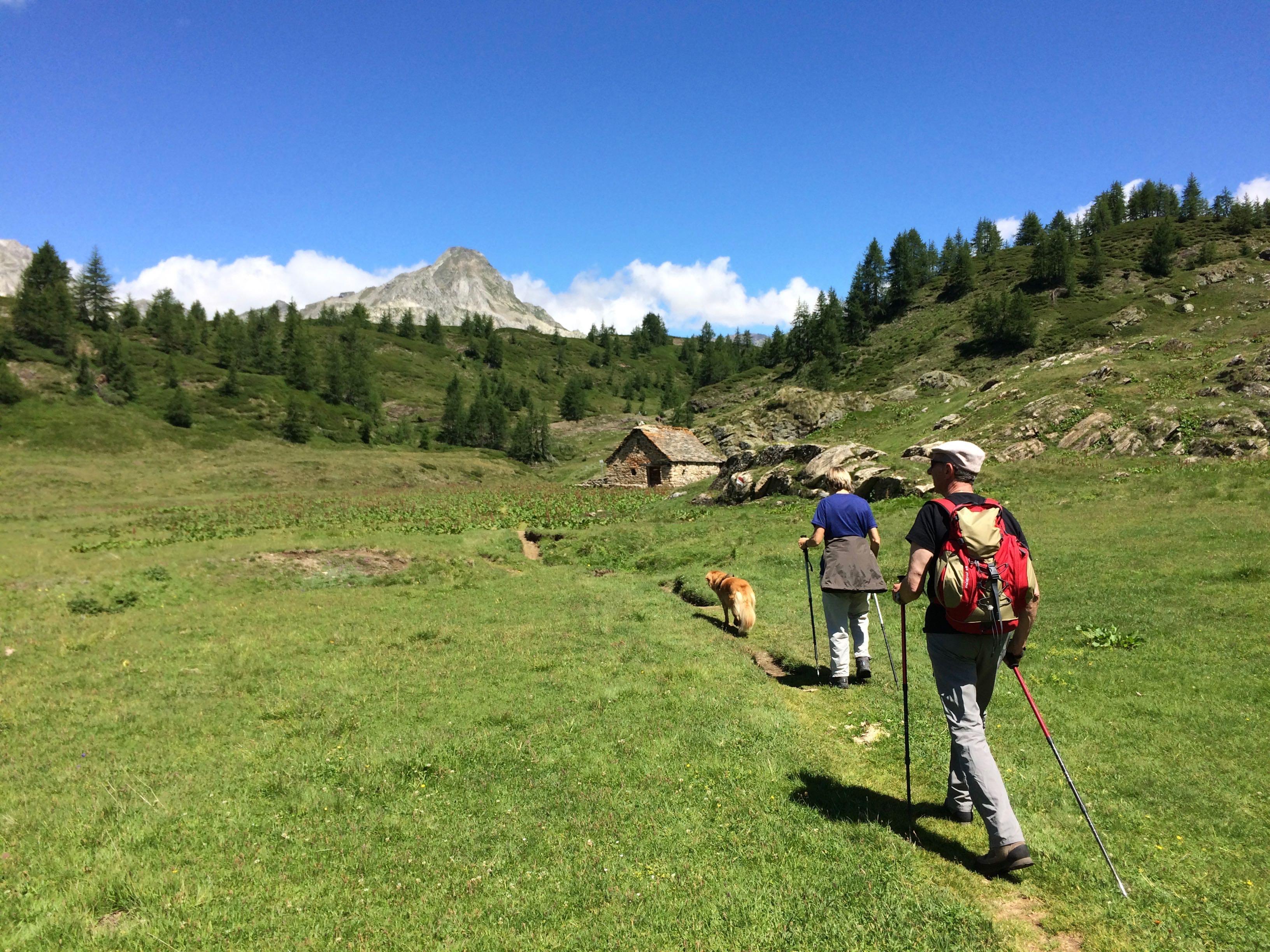 Piana dell'Alpe Cobernas in una bella giornata estiva